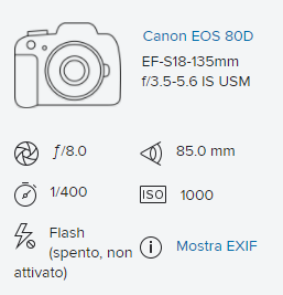 Screenshot (1).png